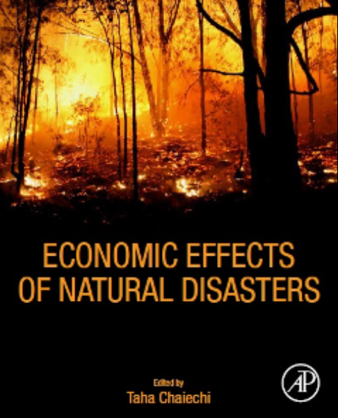 Economic effects of Natural Disasters- Theoretical Foundations, Methods, and Tools, book cover