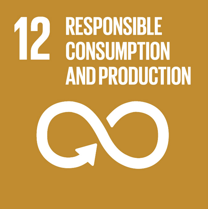 UN Sustainable Development Goal 12 - Responsible consumption and production