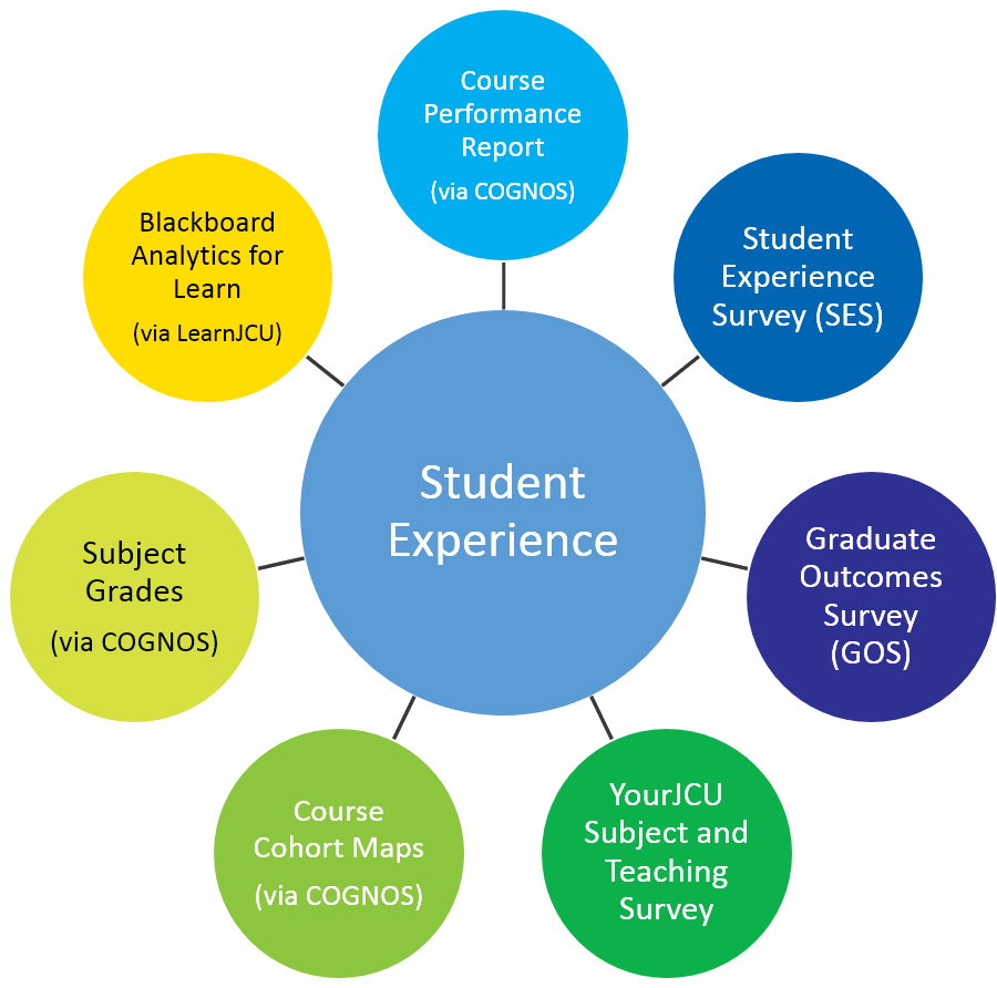 Report graphic - student experience