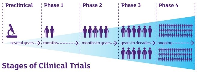 Diagram depicting the stages of QRCPVD clinical trials