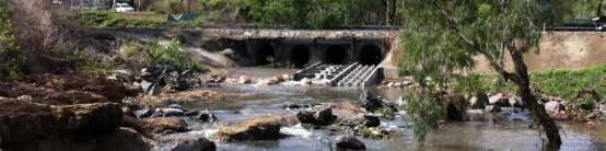 Solander Rd fish ladder