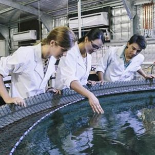 Photo of Marine Biology and Aquaculture Research