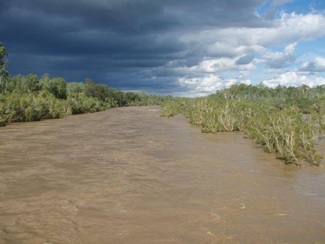 Burdekin in flood