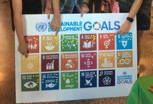 SDG Board