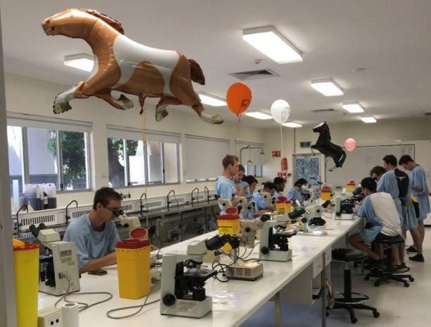 JCU veterinary students