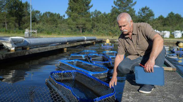 Man working in a fish farm