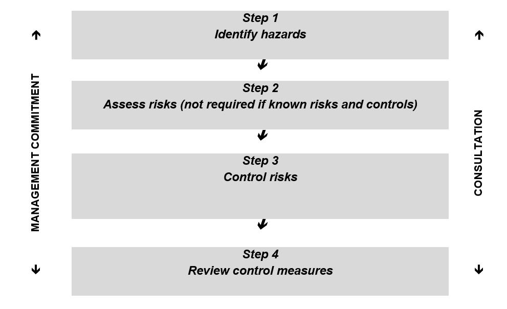 Figure 1 The risk management process