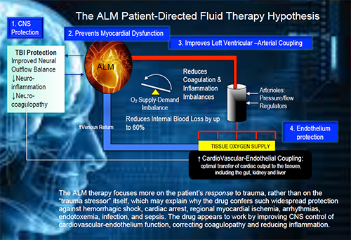 ALM Patient-Directed Fluid Therapy Hypothesis