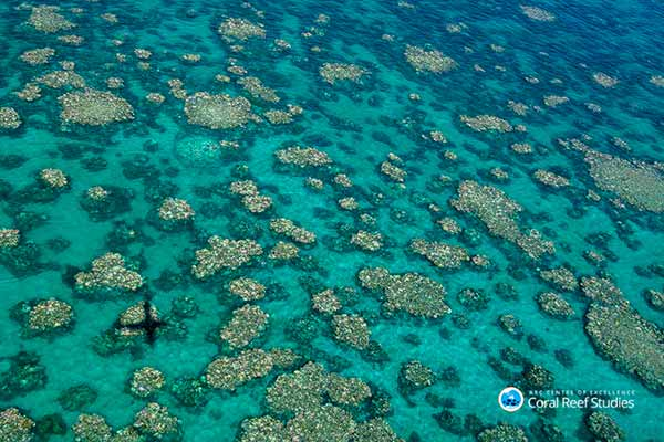 Aerial view of a coral reef image