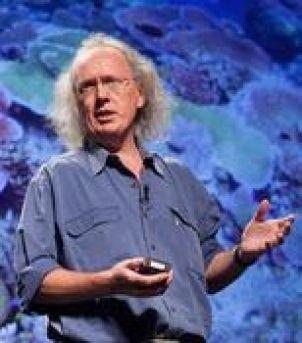 Photo of Professor David Bellwood