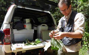 Photo of Australian Tropical Herbarium