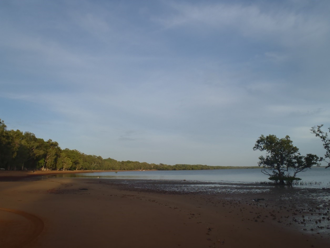 Red Beach low tide