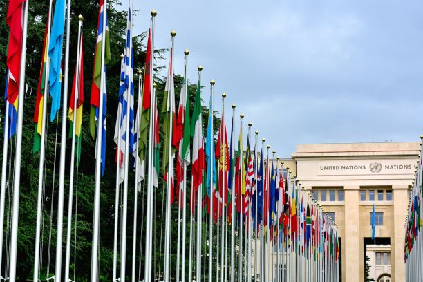 Different national flags on flag poles set against a blue sky and leading towards a large building with 'United Nations' written on the front.