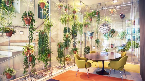 Indoor office with walls of plants