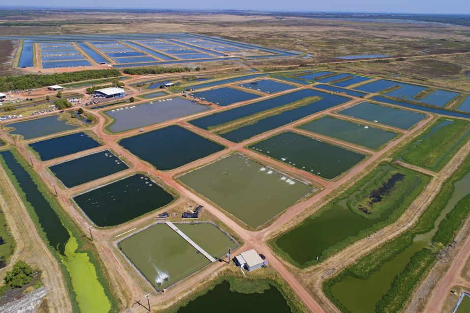 aerial view of aquaculture ponds in the Northern Territory