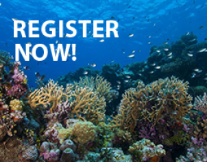 Register now hack the reef