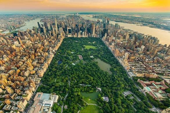 Ariel picture of New York City's central park in summer