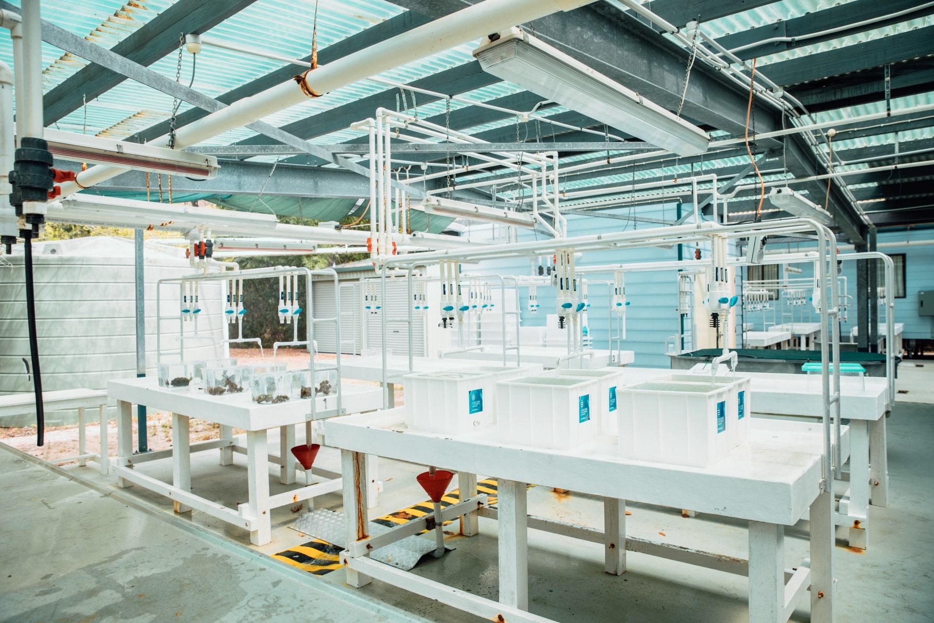 wetlab tables