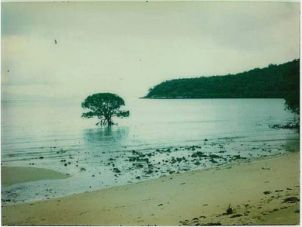 Orpheus Island in March 1978