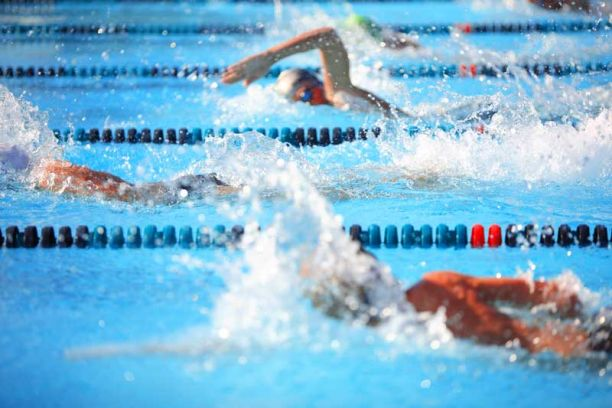 professional swimmers in race