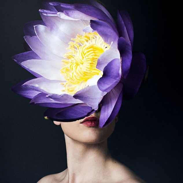Photographic artwork by Narelle Delle Baite as part of Glorious series