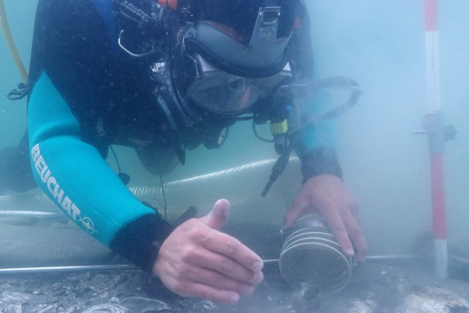 A diver collects samples